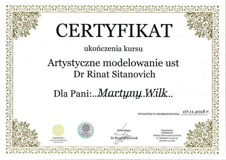 10 Rinat Sitanovich dyplom 2018-min